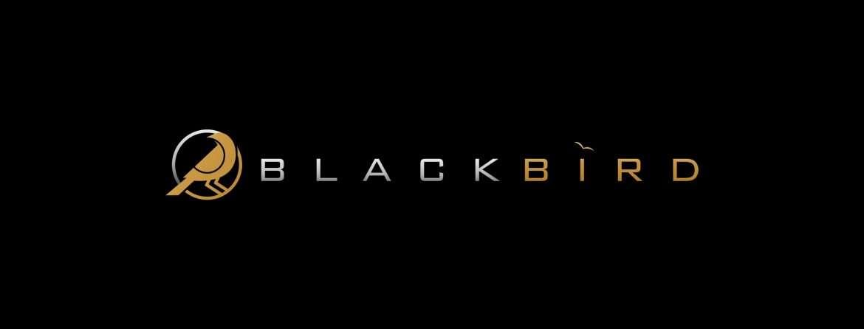 Press Release- BlackBird Logo