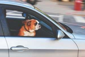Save money with your driving habits