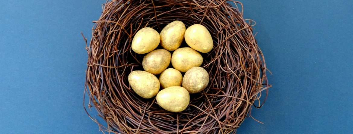 BlackBird Finance: Retirement Nest Eggs